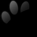 342x330-paw